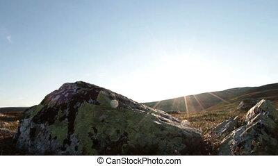 Sunny tundra and rocks