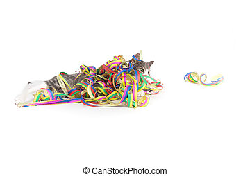 party streamers and a kitten - little grey tiger kitten...