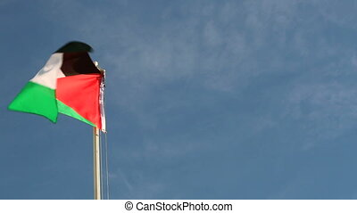 Request Palestine flag in front of a blue sky