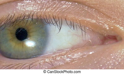 Macro image of human eye  young girl