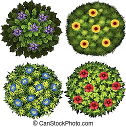 Bushes with colorful flowers illustration