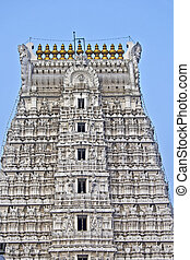 Govindaraj Swami temple - Detail of gopuram of the ancient...