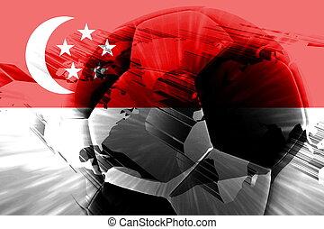 Flag of Singapore soccer