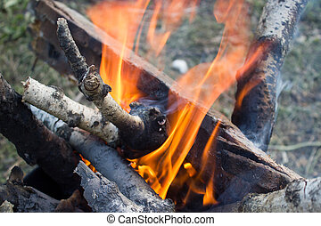 Close up of a bonfire with orange flames and firewood