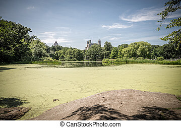 View on the Turtle Pond in Central park in New York -...