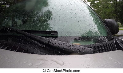 Rain falling on parked truck Florida