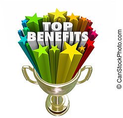 Top Benefits Gold Trophy Award Best Fringe Bonus...
