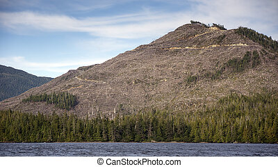 Clearcut Mountain - Clearcut mountain logged in the Tongass...