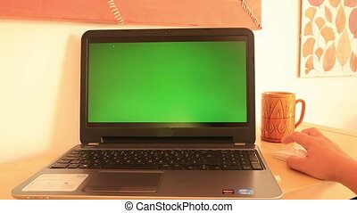 Laptop with green screen - Woman working with green screen...