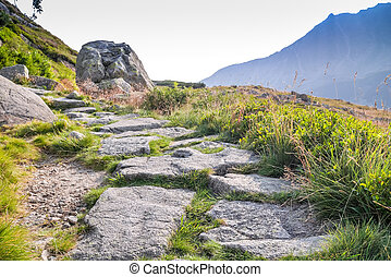 Trail in beautiful Tatra Mountains National Park, Poland