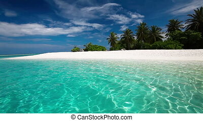 Palm trees over tropical lagoon with white beach in Maldives...