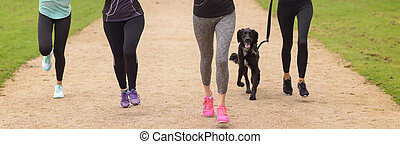 Legs of Women Running at the Park with Pet Dog