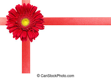 Red ribbon with flower on white card