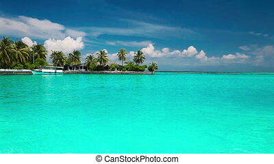 Palm trees, tropical lagoon, boat - Palm trees over tropical...
