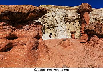 Hoodoo - Toadstool hoodoos in the Utah desert, USA.