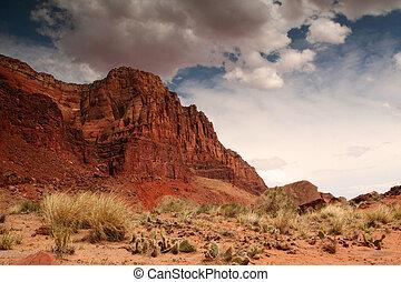 red desert cliffs - desert landscape near the Utah Arizona...