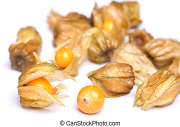 physalis - ripe physalis on a white background