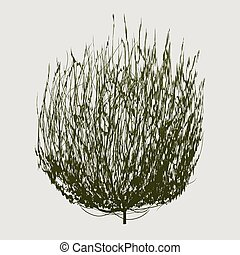 green tumbleweed - isolated dry brown round tumbleweed