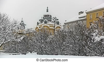 Heavy snowing in Zagreb with treetops and old facades.