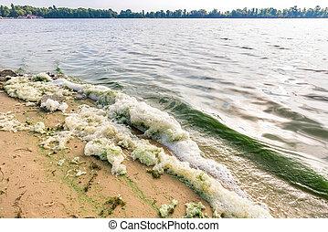 Green Algae and Foam Pollution