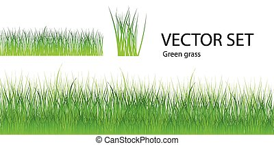 Vector grass set