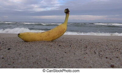 Banana fruit on beach sand - Banana fruit on the beach sand...