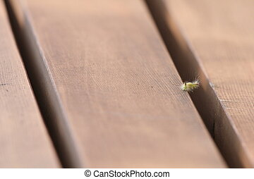 caterpillar on park bench - Caterpillar stretching over a...