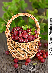 Red gooseberries in wicker basket on wooden table