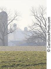 trees & silos