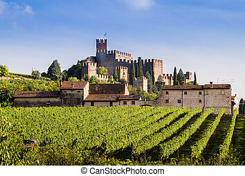 View of Soave (Italy) and its famous medieval castle - View...