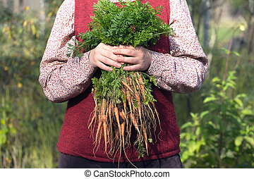 Woman in a garden holding bunch of