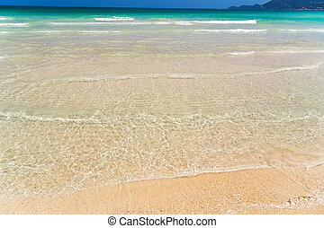 tropical ocean beach