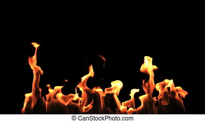 Fire On Black Background - Spurts of flame are blazing...
