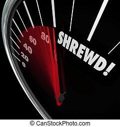 Shrewd Speedometer Business Savvy Knowledge Experience Cunning