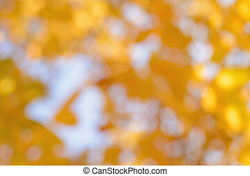 Blurred yellow leaves against the sky