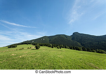 mountain meadows and pastures in Slovakia - mountain meadows...