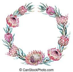 Watercolor tropical protea wreath - Beautiful vector image...