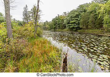 Slow Meandering River Channel in Late Summer - Ontario,...