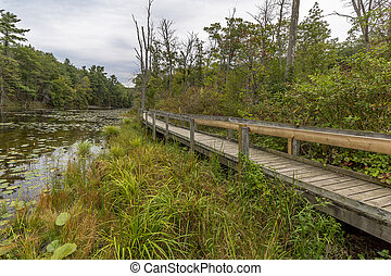 Boardwalk Next to a Slow Meandering River - Wooden Boardwalk...