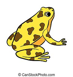 Poison dart frog clip art - photo#14