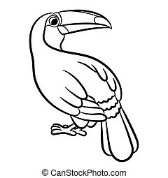 Toucan bird illustration outlined