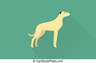 irish wolfhound icon - irish wolfhound flat illustration...