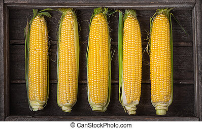 ears of corn in an old wooden box, harvest, top view