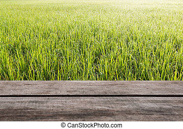 Pattern of green grass and wood floor with color of...