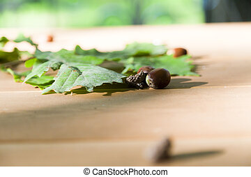 Oak leaves and acorns lie on a wooden table in the dim light...
