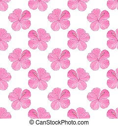 Hibiscus. Seamless pattern with flowers. Hand-drawn background. Vector illustration.
