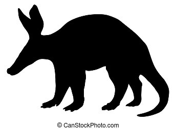 Detailed and isolated illustration of the mammal aardvark