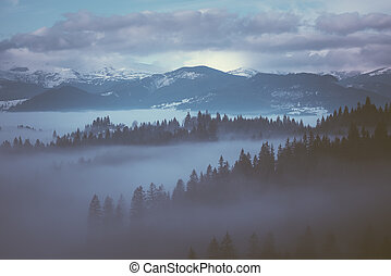 Morning fog in the mountains - Winter Morning with fog in...