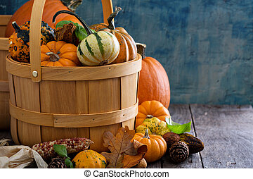 Pumpkins and variety of squash in a harvest basket