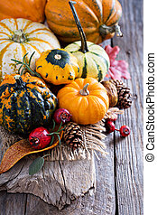 Pumpkins and variety of squash on a rustic table
